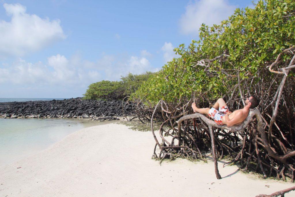 Santa Cruz, Galapagos Inseln, Ecuador, Travel Drift
