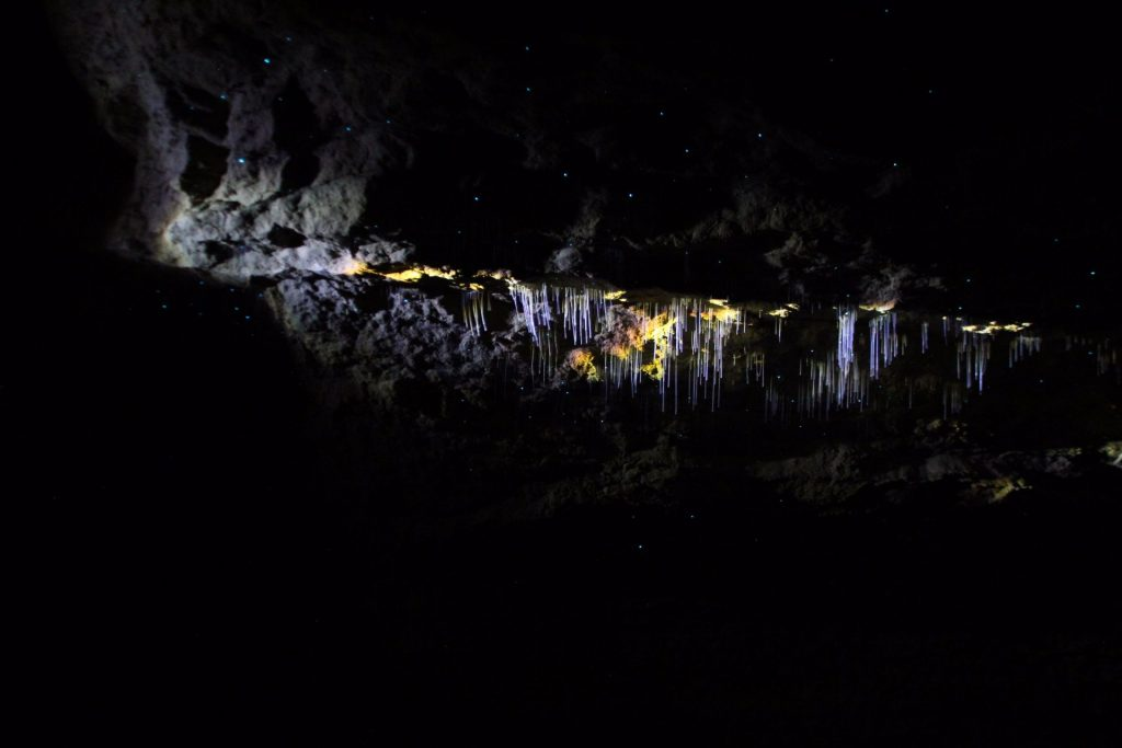 Waitomo Caves, Travel Drift