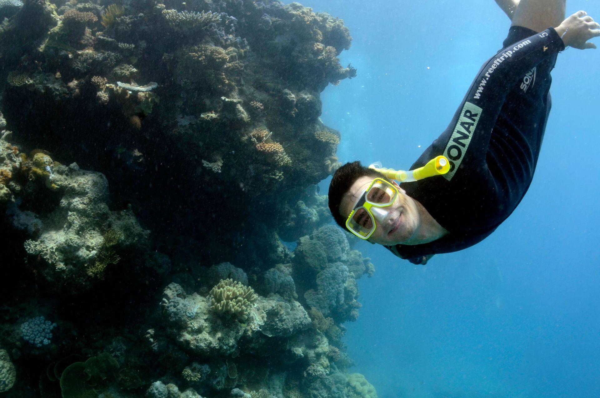 Great Barrier Reef, australia, Travel Drift