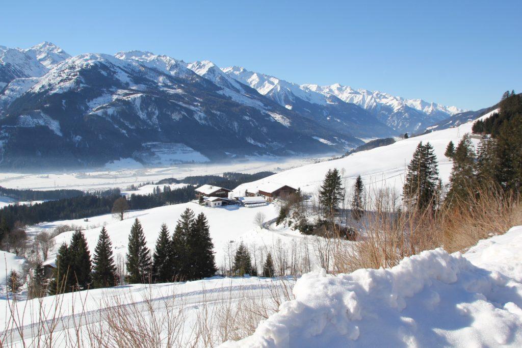 Blick auf die Salzach im Oberpinzgau