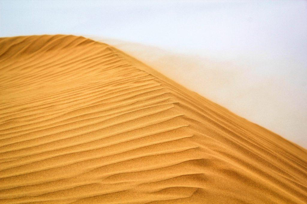 Wüste Gobi, China, Travel Drift