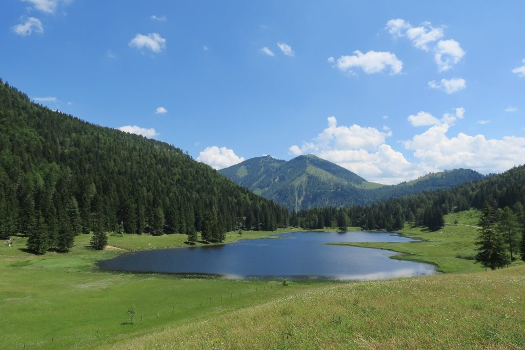 Seewaldsee, Travel Drift