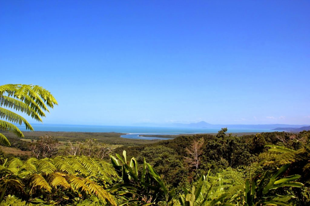 Daintree Nationalpark, Australia, Travel Drift