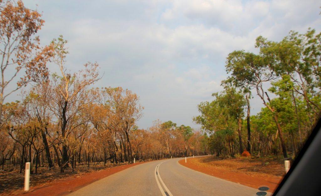 Litchfield Nationalpark, Australia, Travel Drift