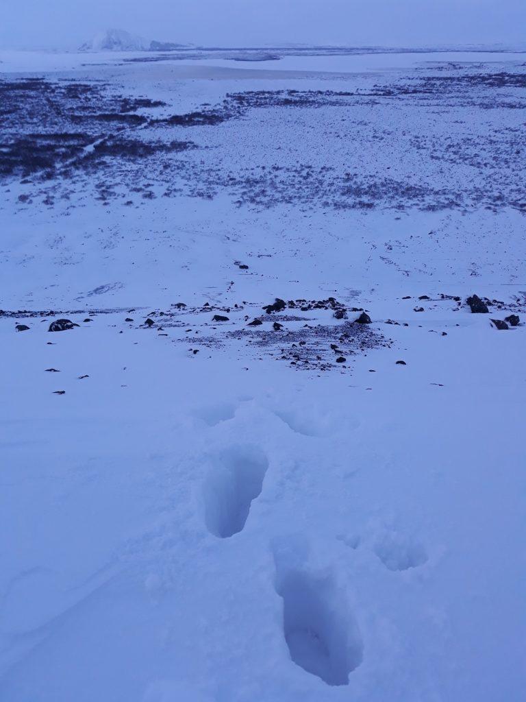 Hverfjall, Myvatn, Travel Drift, Iceland