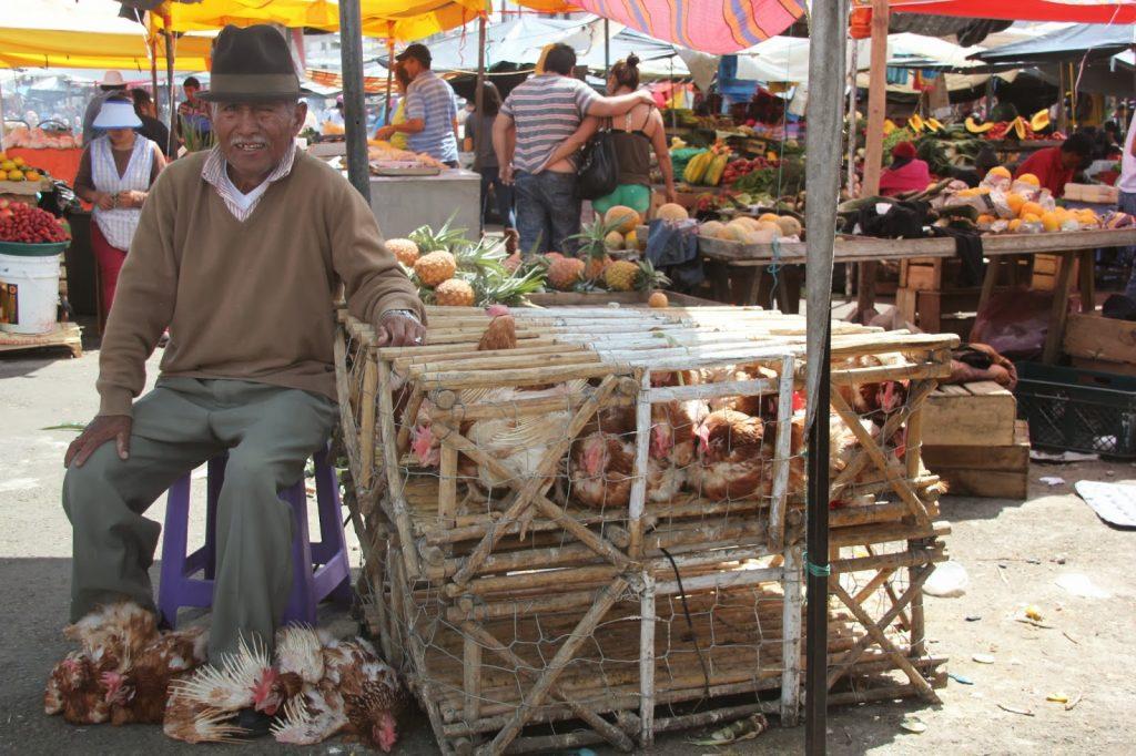 Quito, Ecuador, Travel Drift