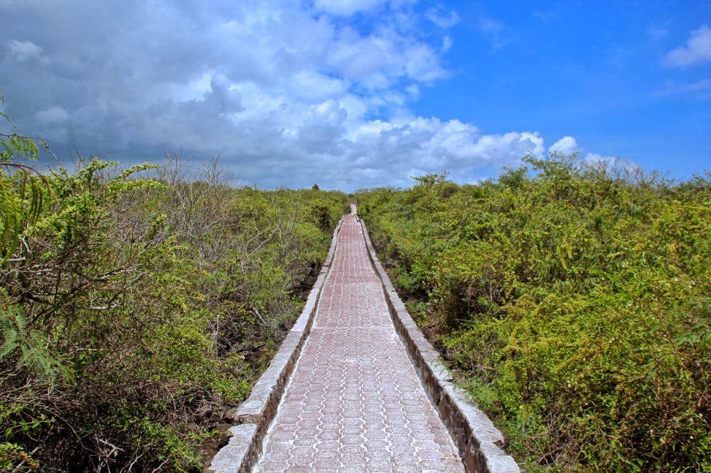 Santa Cruz, Galapagos Islands, Travel Drift