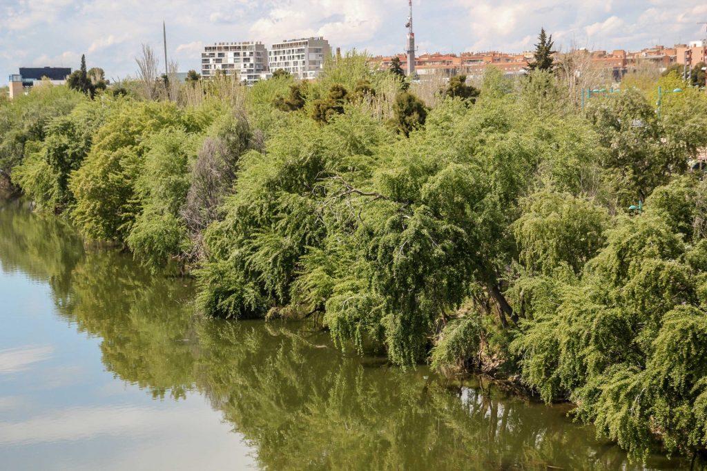 Nebenfluss Des Ebro Kreuzworträtsel