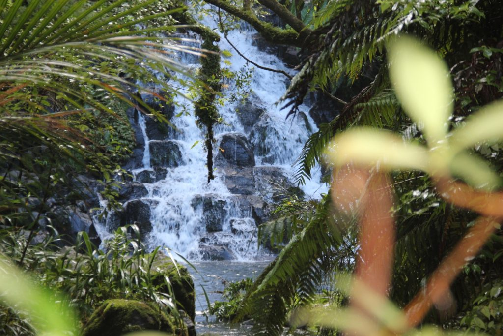 Karamatura, New Zealand, Travel Drift