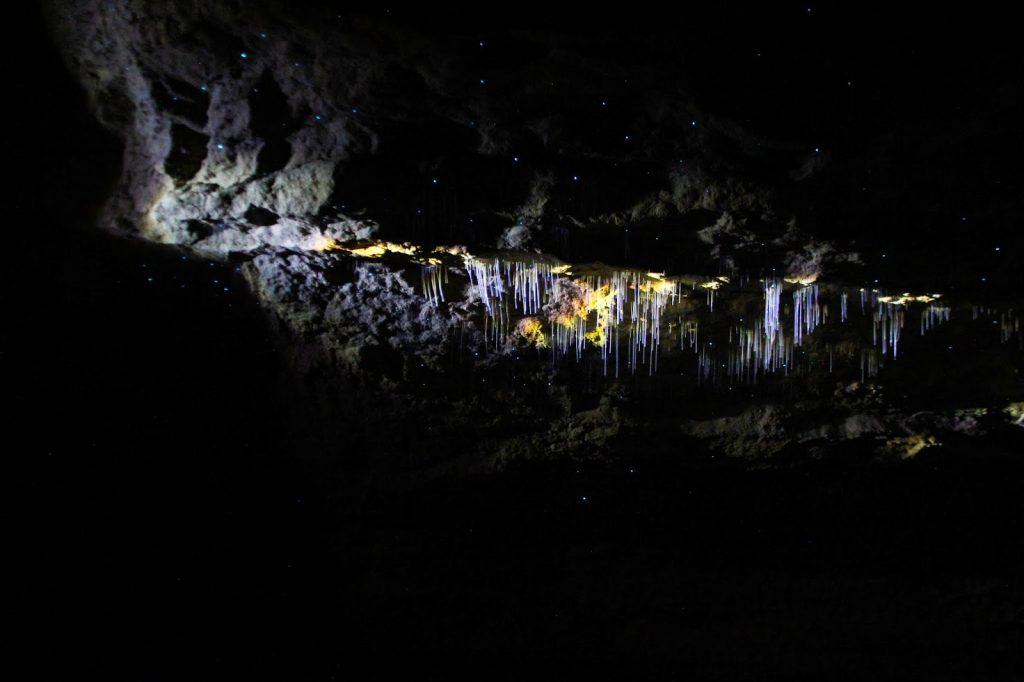 Waitomo Caves, New Zealand, Travel Drift