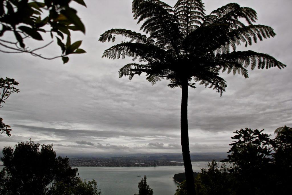 Mt. Maunganui, New Zealand, Travel Drift