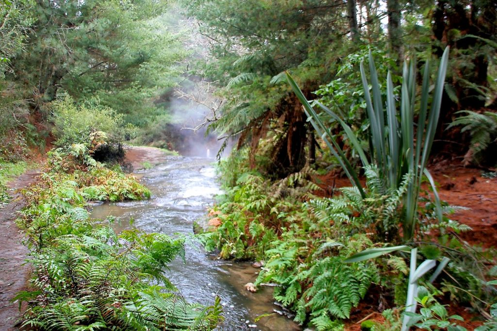 Kerosene Creek, New Zealand, Travel Drift