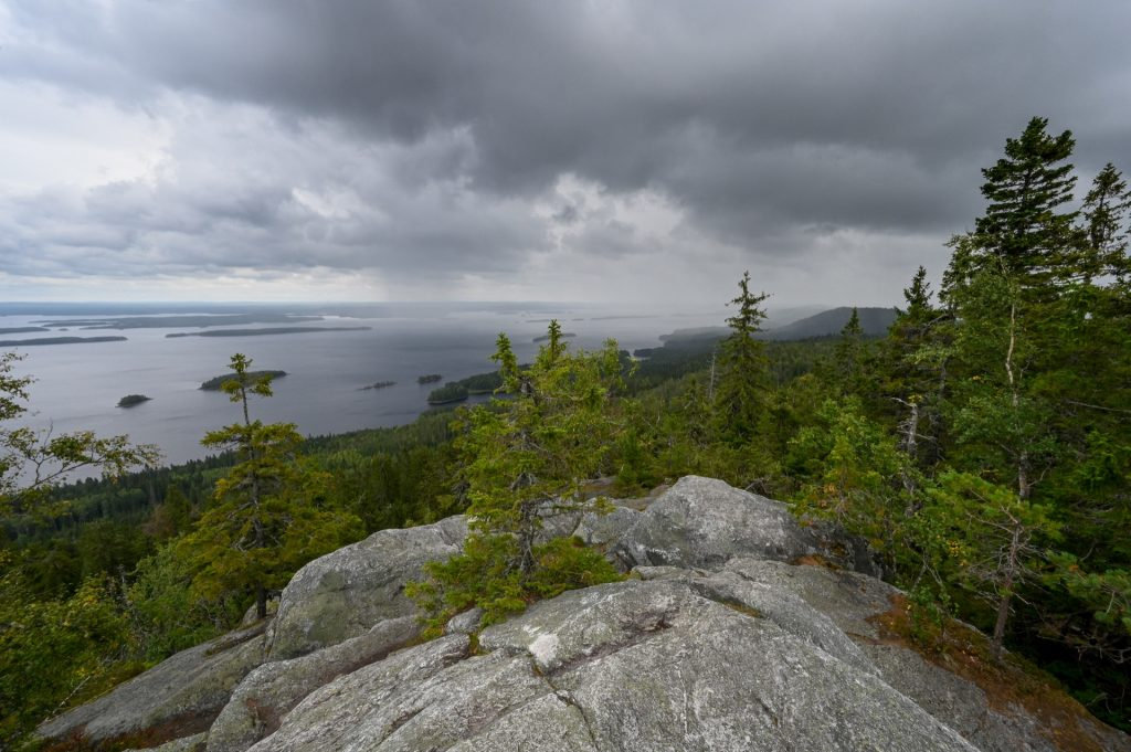 Koli Nationalpark, Finland, Travel Drift